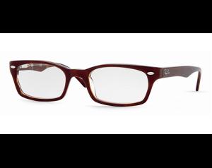 ray ban flex glasses